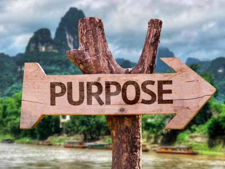 The Importance of Having a Life Purpose
